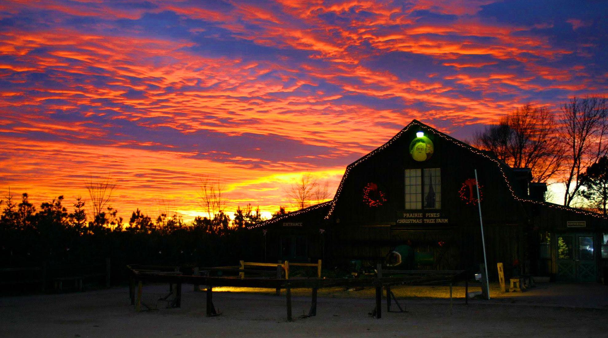 Winter Sunset at Prairie Pines Maize KS